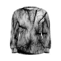 Trees Without Leaves Women s Sweatshirt