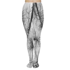 Trees Without Leaves Women s Tights