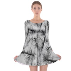 Trees Without Leaves Long Sleeve Skater Dress