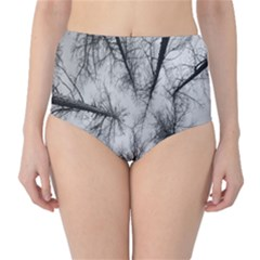 Trees Without Leaves High Waist Bikini Bottoms
