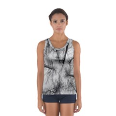 Trees Without Leaves Women s Sport Tank Top
