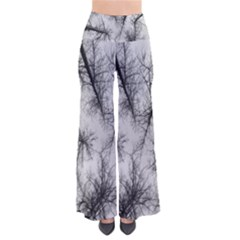 Trees Without Leaves Pants