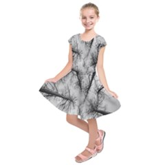 Trees Without Leaves Kids  Short Sleeve Dress