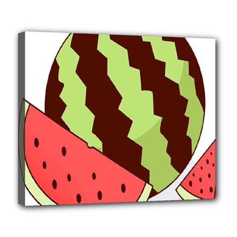 Watermelon Slice Red Green Fruite Circle Deluxe Canvas 24  x 20