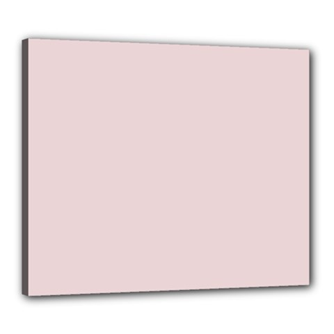 Solid Alice Pink in an English Country Garden Canvas 24  x 20