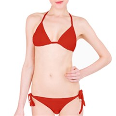 Dahlia Red in an English Country Garden Bikini Set