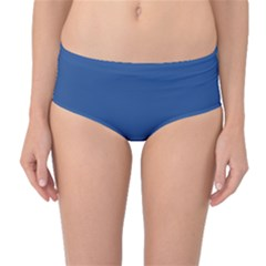 Delphinium Blue in an English Country Garden Mid-Waist Bikini Bottoms