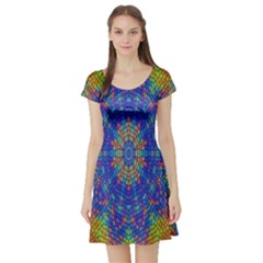 A Creative Colorful Backgroun Short Sleeve Skater Dress