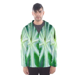 Green Leaf Macro Detail Hooded Wind Breaker (men)