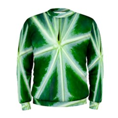 Green Leaf Macro Detail Men s Sweatshirt