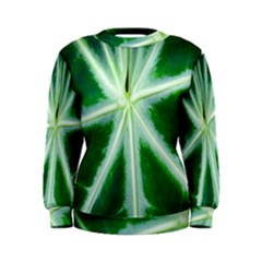 Green Leaf Macro Detail Women s Sweatshirt
