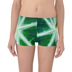 Green Leaf Macro Detail Boyleg Bikini Bottoms