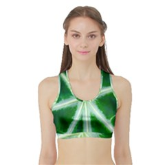 Green Leaf Macro Detail Sports Bra with Border