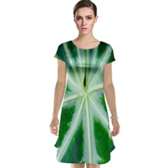 Green Leaf Macro Detail Cap Sleeve Nightdress