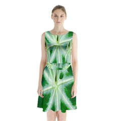 Green Leaf Macro Detail Sleeveless Chiffon Waist Tie Dress
