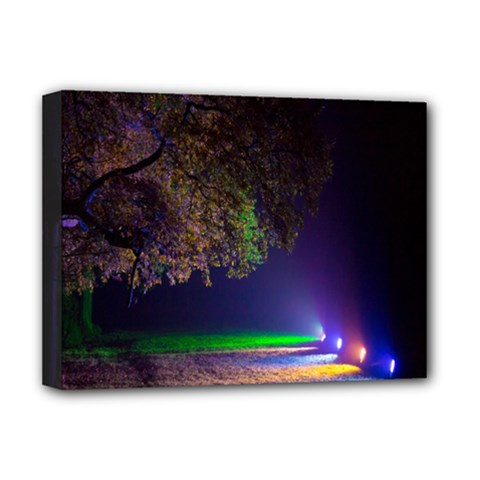 Illuminated Trees At Night Deluxe Canvas 16  X 12