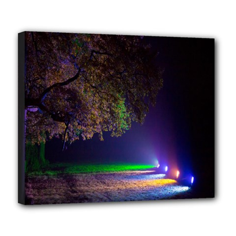 Illuminated Trees At Night Deluxe Canvas 24  x 20