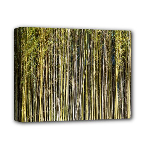 Bamboo Trees Background Deluxe Canvas 14  x 11