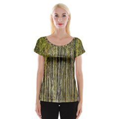 Bamboo Trees Background Women s Cap Sleeve Top