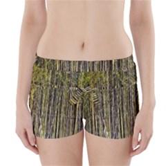 Bamboo Trees Background Boyleg Bikini Wrap Bottoms