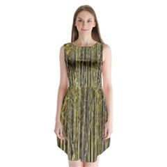 Bamboo Trees Background Sleeveless Chiffon Dress