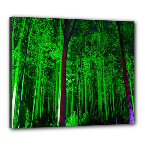 Spooky Forest With Illuminated Trees Canvas 24  X 20