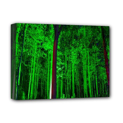 Spooky Forest With Illuminated Trees Deluxe Canvas 16  x 12