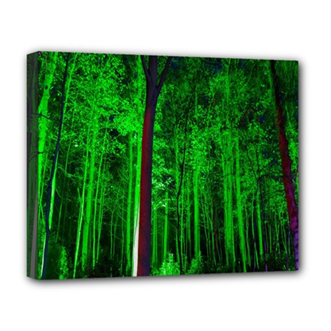 Spooky Forest With Illuminated Trees Deluxe Canvas 20  x 16