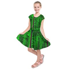 Spooky Forest With Illuminated Trees Kids  Short Sleeve Dress