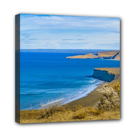 Seascape View From Punta Del Marquez Viewpoint, Chubut, Argentina Mini Canvas 8  x 8