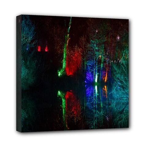 Illuminated Trees At Night Near Lake Mini Canvas 8  x 8