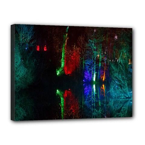 Illuminated Trees At Night Near Lake Canvas 16  x 12