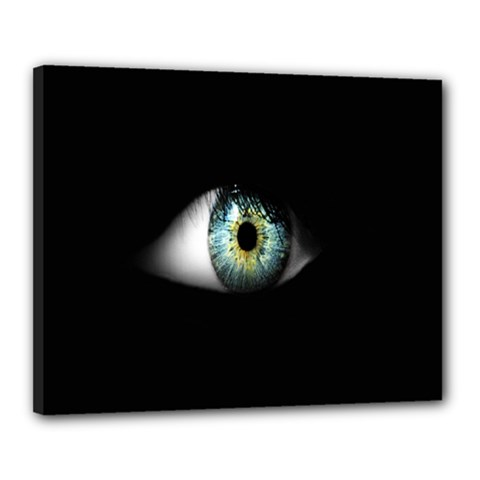 Eye On The Black Background Canvas 20  x 16