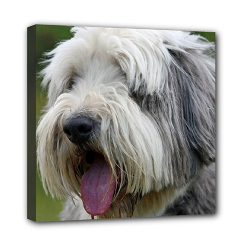 Bearded Collie Mini Canvas 8  x 8