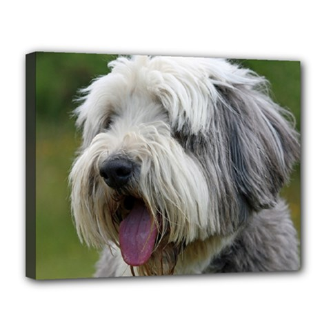 Bearded Collie Canvas 14  x 11