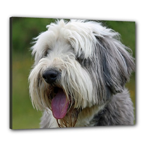 Bearded Collie Canvas 24  x 20