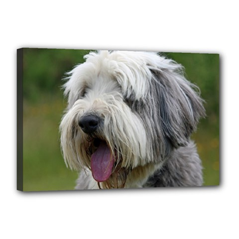 Bearded Collie Canvas 18  x 12
