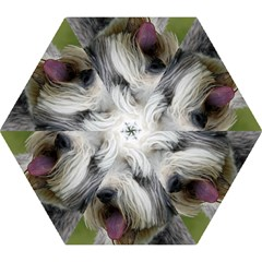 Bearded Collie Mini Folding Umbrellas
