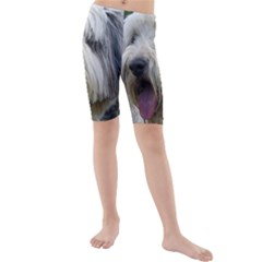 Bearded Collie Kids  Mid Length Swim Shorts