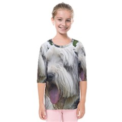 Bearded Collie Kids  Quarter Sleeve Raglan Tee