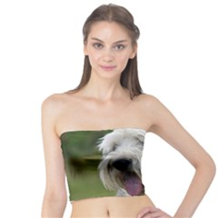 Bearded Collie Tube Top