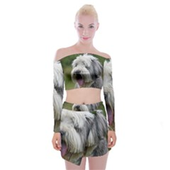 Bearded Collie Off Shoulder Top with Skirt Set