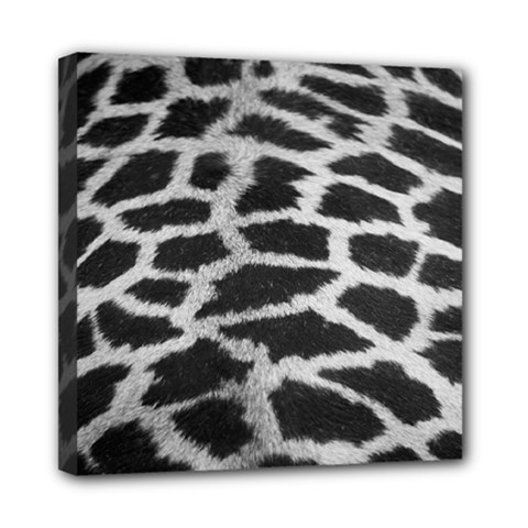 Black And White Giraffe Skin Pattern Mini Canvas 8  x 8