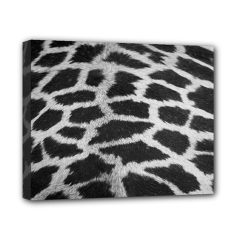 Black And White Giraffe Skin Pattern Canvas 10  x 8
