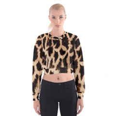 Giraffe Texture Yellow And Brown Spots On Giraffe Skin Cropped Sweatshirt