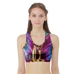 Magic Butterfly Art In Glass Sports Bra With Border