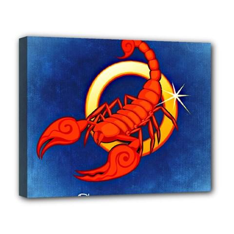 Zodiac Scorpio Deluxe Canvas 20  x 16