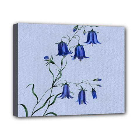 Floral Blue Bluebell Flowers Watercolor Painting Canvas 10  X 8