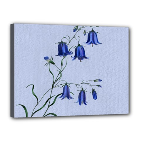 Floral Blue Bluebell Flowers Watercolor Painting Canvas 16  x 12