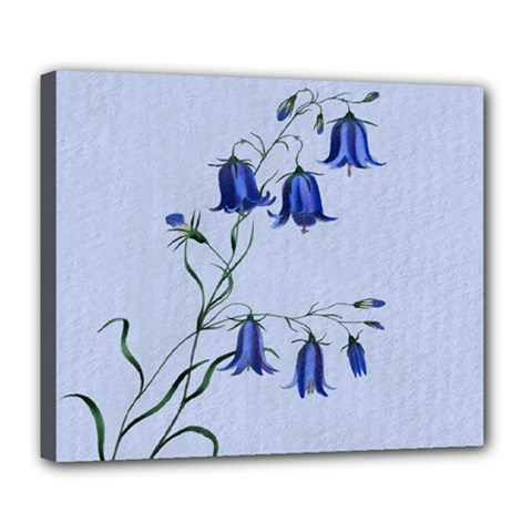 Floral Blue Bluebell Flowers Watercolor Painting Deluxe Canvas 24  x 20